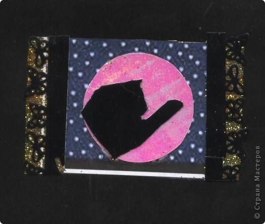 """Кошки под луной. Вы скажете """"РОЗОВАЯ""""?!? Нет, всё зависит от освещения. А вообще-то лимонно-жёлтая!!! фото 5"""