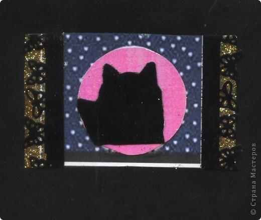 """Кошки под луной. Вы скажете """"РОЗОВАЯ""""?!? Нет, всё зависит от освещения. А вообще-то лимонно-жёлтая!!! фото 6"""
