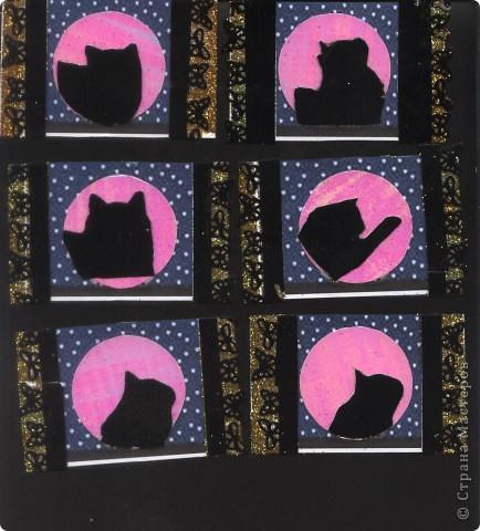 """Кошки под луной. Вы скажете """"РОЗОВАЯ""""?!? Нет, всё зависит от освещения. А вообще-то лимонно-жёлтая!!! фото 1"""