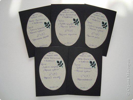 Эти карточки я получила по АТС-игре Олисандры http://stranamasterov.ru/node/211670.  БЛАГОДАРЮ ВСЕХ ДЕВОЧЕК ЗА ОРИГИНАЛЬНЫЕ АТС И ЧУДЕСНЫЕ ПОДАРОЧКИ!!!!!!!!!!!!!!!!!!!!!!!! фото 13