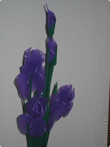 Доброго времени суток!!!!Представляю вам мои первые работы капроновой флористики. Прошу любить и жаловать!!!! фото 2