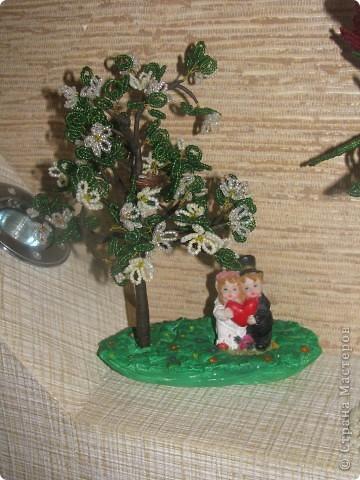 Дерево в цвету фото 2