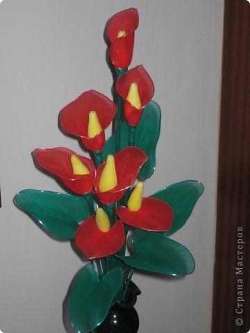 Доброго времени суток!!!!Представляю вам мои первые работы капроновой флористики. Прошу любить и жаловать!!!! фото 5