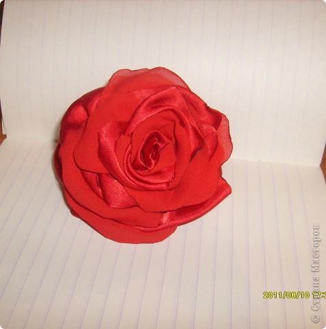 наконец то я решилась сделать такую розу !!!! все смотрела восхищалась работами наших мастериц, а сама как то побаивалась :) Но вот что получилось :) фото 3