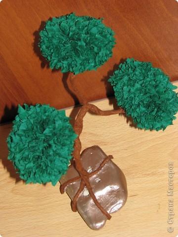 Идея с бонсаями мне очень понравилась. И после большого бонасая, сделанного для мамы, решила я сотворит еще парочку маленьких. Закрепила из на больших камушках с моря, прокрашенных акриловой краской. фото 6