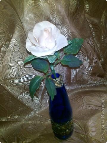 Роза не совсем удачная, но показываю для илюстрации. фото 1