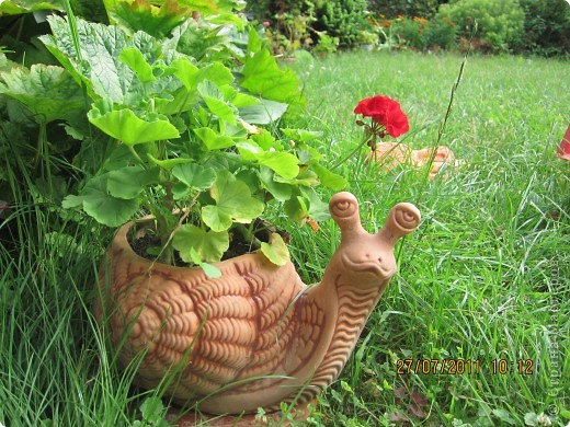 Этот арбузик - кормушка для птиц. фото 14