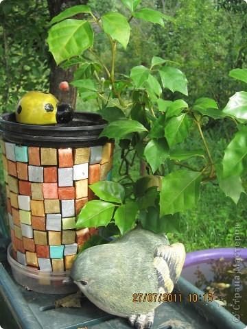 Этот арбузик - кормушка для птиц. фото 9