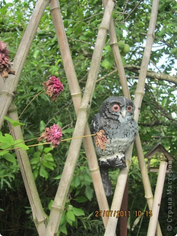 Этот арбузик - кормушка для птиц. фото 10
