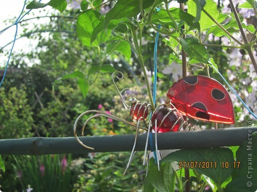 Этот арбузик - кормушка для птиц. фото 19