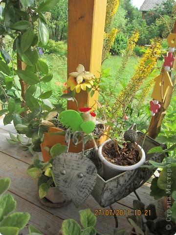 Этот арбузик - кормушка для птиц. фото 17