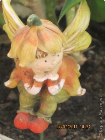 Этот арбузик - кормушка для птиц. фото 23