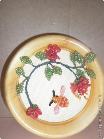 Пчела собирающая мед фото 1