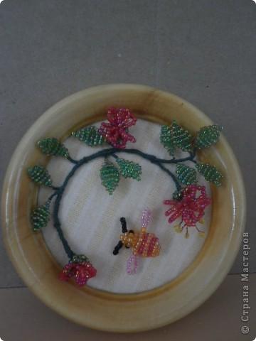 Пчела собирающая мед фото 2