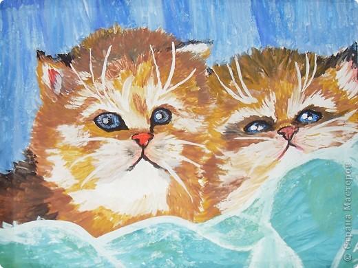 котята фото 1