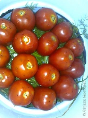 Итак моим помидорики в моем случае это сливки.Но желательно что б были круглинькие и тонкошкурые тогда быстрее процесс просаливания. фото 5