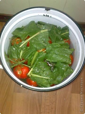 Итак моим помидорики в моем случае это сливки.Но желательно что б были круглинькие и тонкошкурые тогда быстрее процесс просаливания. фото 7
