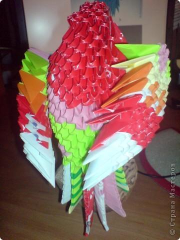 Мой попугайчик. фото 2