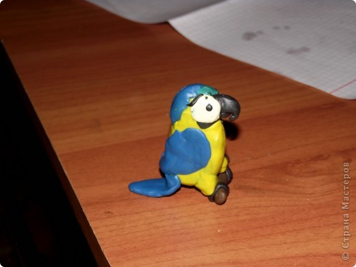 Ара попугай. фото 1