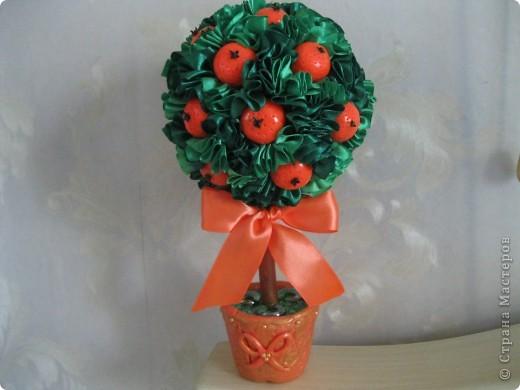 еще одно деревце с апельсинами фото 1
