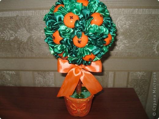еще одно деревце с апельсинами фото 3