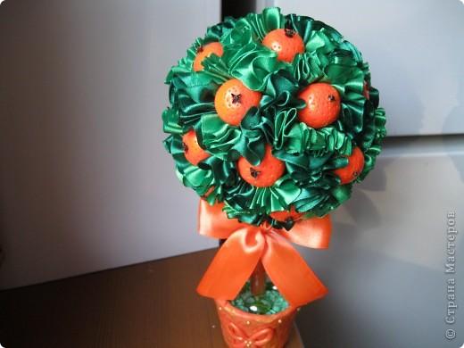 еще одно деревце с апельсинами фото 5