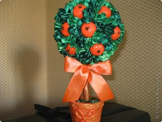еще одно деревце с апельсинами фото 6
