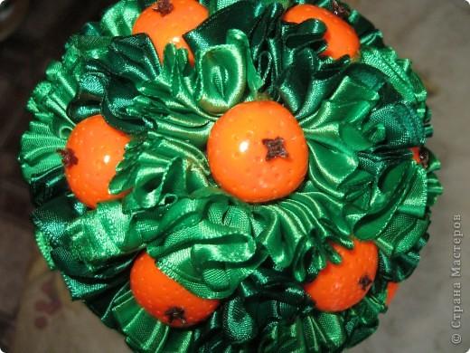 еще одно деревце с апельсинами фото 7