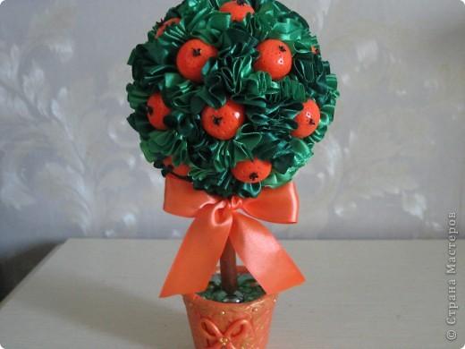 еще одно деревце с апельсинами фото 8