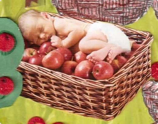 Кого-то приносит аист, кого-то находят в капусте, а кого-то покупают в магазине. А этого малыша нашли в яблочках))))) фото 2
