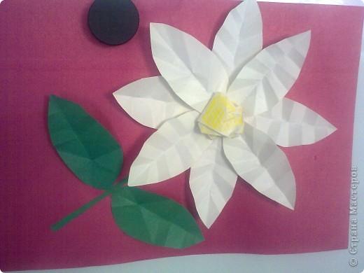 Стебли и листья складываем попалам и по линии сгиба складываем гармошкой несколько раз. Серцевина - бумага, скомканная в комок. Приклеиваем только кончики. Клей лучше - ПВА. Сначало приклеиваем  лепестки, потом серцевину цветка, стебель и листья.
