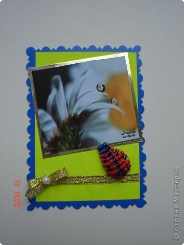 Продолжение серии. Использованы фото Т. Соколовой. Украшены бисерными лягушатами и божьими коровками. фото 10