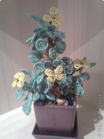 Это мое первое дерево. фото 1