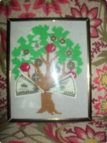 денежное дерево фото 1
