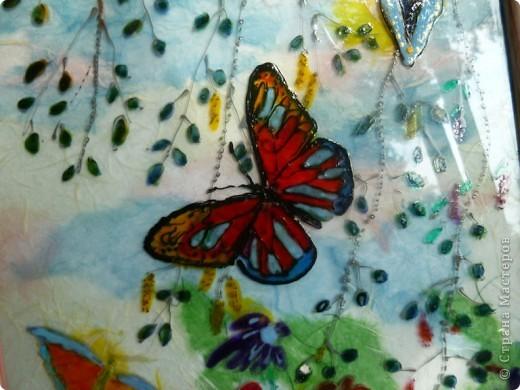 Легкокрылые бабочки  в летний  день.Нежные  крохотные  листочки  березки. фото 3