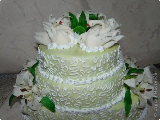 Хочу выставить свои торты вам на обозрение. Училась лепить в стране у мастериц по лепке из холодного фарфора. фото 1