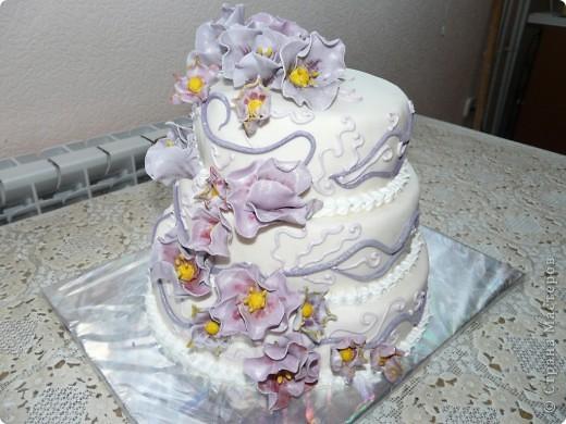 Этот тортик самый последний. На данное время его наверно сейчас уже пытаются съесть. Вес 6,3 кг. фото 1