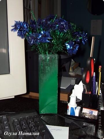 Представляю на обсуждение свой новый букет васильков. Расцвели они у меня на рабочем столе... и выглядят так: фото 4