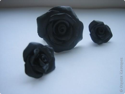 """Набор """"Черные розы"""" кольцо и серьги фото 1"""