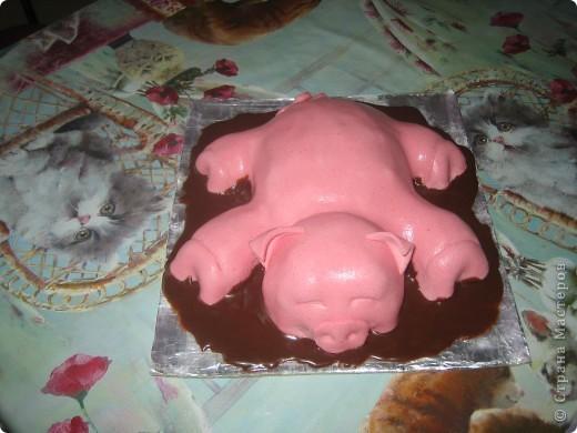 """Торт """"Хрюшка в шоколаде"""" фото 1"""