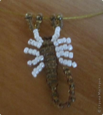доче-скорпион по месяцу)) фото 1