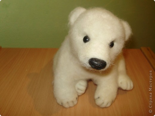 медвежонок фото 2
