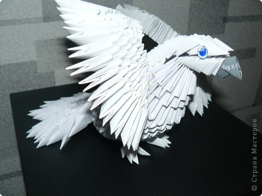 Мой попугайчик. фото 6