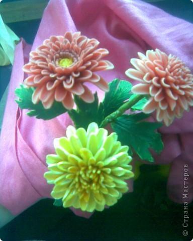 Хризантемы из холодного фарфора фото 2