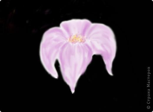 Цветок кистями в Photoshop