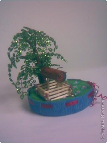 Деревья фото 16