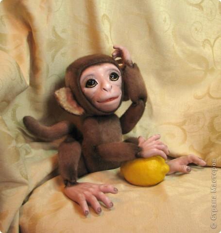 Представляю вашему вниманию мою Люсечку)) Работа над обезьянкой меня охватила полностью! Я очень долго мечтала о ней, но заказы были на первом месте, и создание этой непоседы все откладывала на потом, а потом так и не наступало. Но, тут я просто не выдержала, отложила все на задний план и решила дать жизнь моей Люсечки)) Пошита девочка из искуственного меха, тонирована акрилом. Ручки, ножки и голова на болтах. Суставы на нитяном креплении Люблю ее так сильно, как только возможно)) От создании выкройки, до завершающего штриха прошло около 3х недель. Самое сложное и долгое - вылепить детали, как можно реалистичнее. А вот как сделать голову с лепленным лицом, да еще и на болтовом креплении, и обтянутое мехом.. Над этим долго ломала голову. Наполнена обезьянка опилками и стеклянными шариками. Получилась довольно тяжеленькая. фото 3