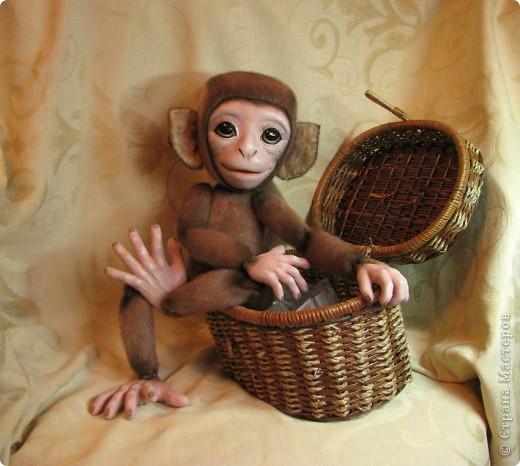 Представляю вашему вниманию мою Люсечку)) Работа над обезьянкой меня охватила полностью! Я очень долго мечтала о ней, но заказы были на первом месте, и создание этой непоседы все откладывала на потом, а потом так и не наступало. Но, тут я просто не выдержала, отложила все на задний план и решила дать жизнь моей Люсечки)) Пошита девочка из искуственного меха, тонирована акрилом. Ручки, ножки и голова на болтах. Суставы на нитяном креплении Люблю ее так сильно, как только возможно)) От создании выкройки, до завершающего штриха прошло около 3х недель. Самое сложное и долгое - вылепить детали, как можно реалистичнее. А вот как сделать голову с лепленным лицом, да еще и на болтовом креплении, и обтянутое мехом.. Над этим долго ломала голову. Наполнена обезьянка опилками и стеклянными шариками. Получилась довольно тяжеленькая. фото 4