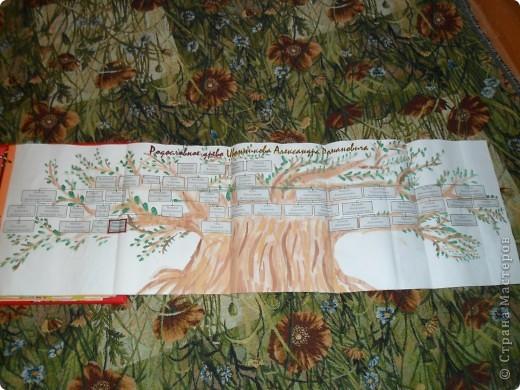 1. Взяла обычную папку, можно купить в магазине. У нас была от какого-то журнала, кажется, про самоцветы и страницы разделители к нему. Можно страницы самому сделать из листов картона, вырезать нужный размер и проколоть дыроколом. Я покрасила листы по цвету радуги. Обложку я обклеила тканью под кожу, внутри тоже ткань. Сверху надпись из ленточек - приклеивала на двусторонний скотч, клеем у меня все скользило, ткань глянцевая была. Плюс украшения-наклейки, как подскажет фантазия. фото 7