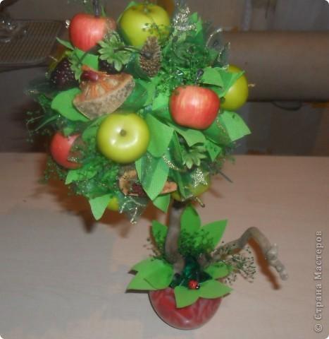 Попросили сделать что-нибудь в подарок женщине. Моей фантазии хватило на вот такой фруктовый топиарий... фото 1